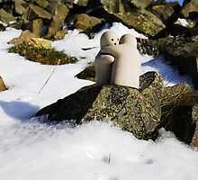 Hugs in the Snow 2 by Craig Maguire