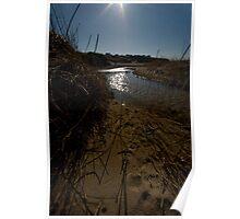 Through Golden Sands Poster