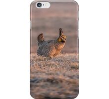 Prairie Chicken 2013-10 iPhone Case/Skin