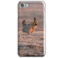 Prairie Chicken 2013-10 iPhone Case/Skin
