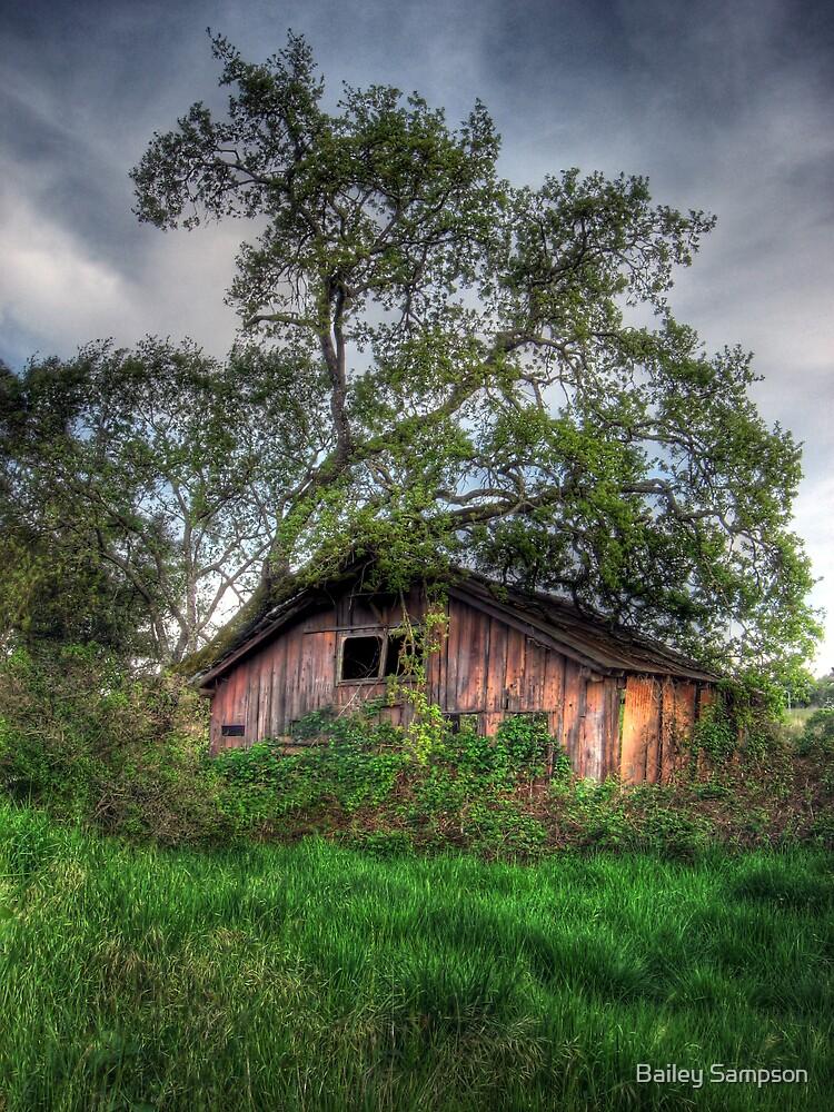 Dilapidated Barn by Bailey Sampson