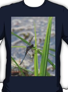 Dragonfly in the Irish Wilderness T-Shirt