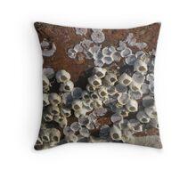 winter barnacles Throw Pillow
