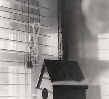 Bird House by danielleunicorn