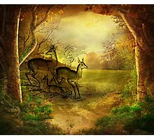 FAWN FAMILY IN FOREST Photographic Print