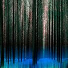 Forest fantasy by Peter Wickham