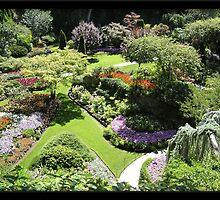 Butchart Gardens. Canada. by Elizabeth  Dew