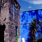 Colour Blue by Elizabeth  Dew