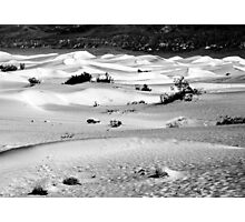 Sand Dunes, Death Valley Photographic Print