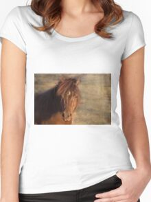 Shetland Pony at sunset Women's Fitted Scoop T-Shirt