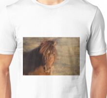 Shetland Pony at sunset Unisex T-Shirt