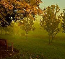 April mist by Rosalie Dale