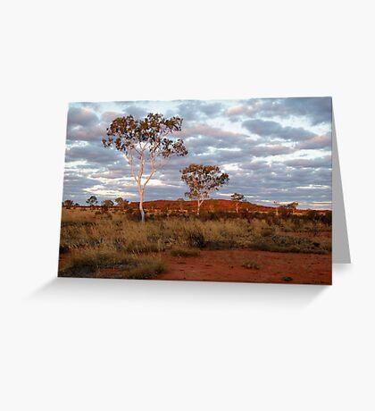Sunset Ghost Gums,Batton Hill, North Simpson Desert Greeting Card