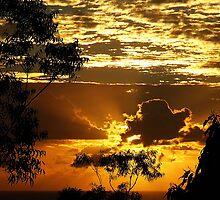 Golden Dawn........ by debsphotos