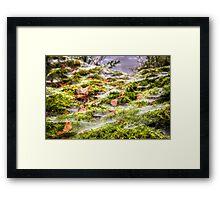 Inverness Morning Webs, Scotland. Framed Print