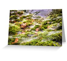 Inverness Morning Webs, Scotland. Greeting Card