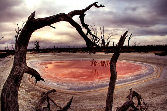 Salt pan by Steve Chapple