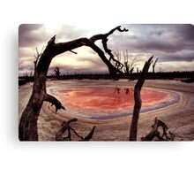 Salt pan Canvas Print
