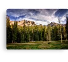 Meadow Above the Basin Canvas Print