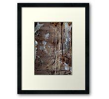 Freedom Of Expression II Framed Print