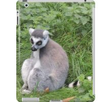 Has Anyone Seen My Tail? (I'm sure it was here a moment ago...) iPad Case/Skin