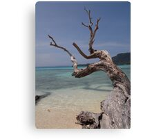 South Pacific Dreaming Canvas Print