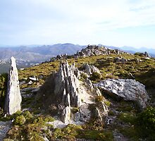 rocky top of Mt Read, Rosebery, Tasmania by gaylene