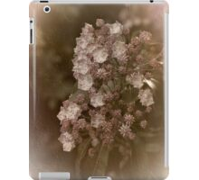 Vintage Spray iPad Case/Skin