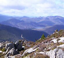 Mt Read top again - at Rosebery, Tasmania. by gaylene
