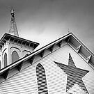 Star Barn #1. by Jeff  Wiles