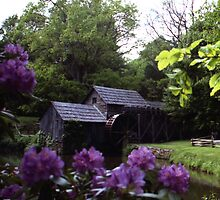 Mabry Mill, Virginia by Benjamin Padgett