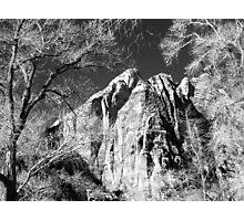 Zion Vista No.1 Photographic Print