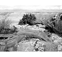 Grand Canyon Vista No. 2 Photographic Print