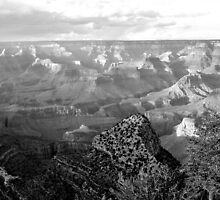 Grand Canyon Vista No. 5 by Benjamin Padgett