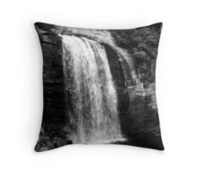Looking Glass Falls Throw Pillow
