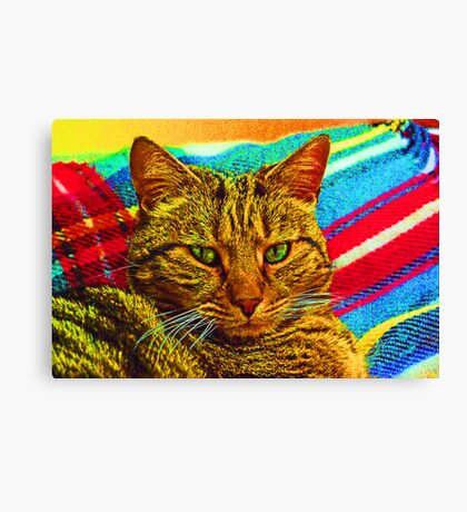 psychedelic fur! Canvas Print