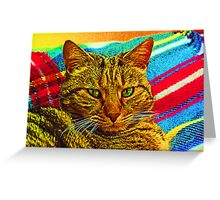 psychedelic fur! Greeting Card