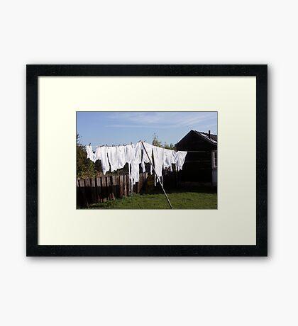 Weekly Wash Framed Print