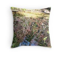 Swirling Water Throw Pillow