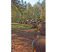 Rusty Vintage Cars and Trucks Photographic Print
