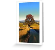 Roadside tree in indian summer colors | landscape photography Greeting Card