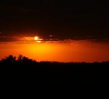 Everglades Sunset by Michael Damanski