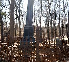 Country Cemetery by BarbHoffman