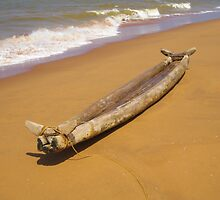 Boat in India by Sandyou