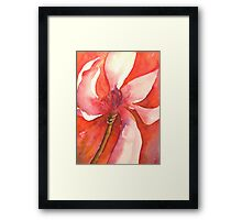wild magnolia 'for the love of flowers' © 2007 patricia vannucci  Framed Print