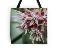 Buds Blooming into Stars Tote Bag