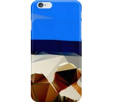 Beach Sea Sun n Surf iPhone Case/Skin