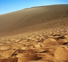 Sand Dunes and Blue Skies by fatfatin