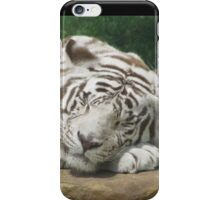 Sleep Tight Mighty Kahn ~ iPhone Case/Skin
