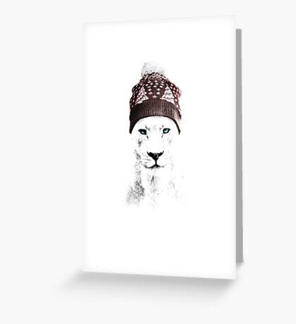 Xmas Lioness Greeting Card